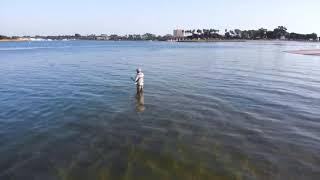 Fly Fishing Mission Bay San Diego