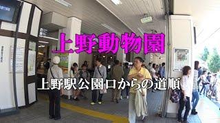 【アクセス】上野動物園上野駅公園口からの道順