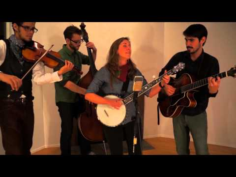 Steph Stewart & the Boyfriends, Nobody's Darlin'