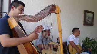 Cuando Tu Me Besas(Version Mariachi) Mariachi Nuevo Tamazula