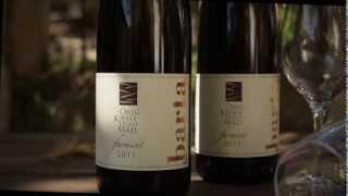 World Heritage Hungary Tokaj Barta Wine / Világörökség Tokaj Barta Pince