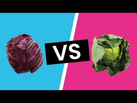 , title : 'Red Cabbage vs. Green Cabbage - What's the Difference?