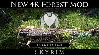 NEW 4K FOREST MOD - FOREST OF DIBELLA   Skyrim SE Ultra ENB Graphics   Nvidia GTX 1080
