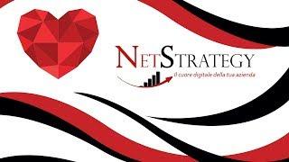 NetStrategy - Video - 3