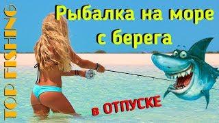 Когда в болгарии ловить кефаль