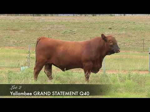 YALLAMBEE GRAND STATEMENT Q40 (AI) (MAF) (NHF) (OSF) YRAQ40