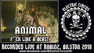 Electric Circus UK (WASP Tribute band) Animal, F*ck Like A Beast.(W.A.S.P. cover),  Robin2