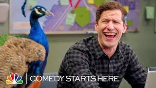 Andy Samberg Turns to the Peacock for Joke Ideas - NBC