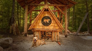 NOT Alone with My Dog at the Log Cabin, Wild Edibles, Wild Life, Hugelkultur | Kholo.pk