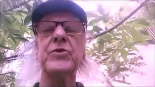 El cuento del Bambuco antioqueño -2019