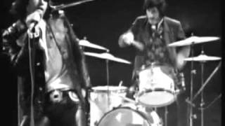 the Doors   the wasp live
