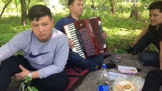 элдик таланттар аккордеон ырлары