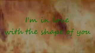 Ed Sheeran - Shape of you (Fame On Fire with lyrics)