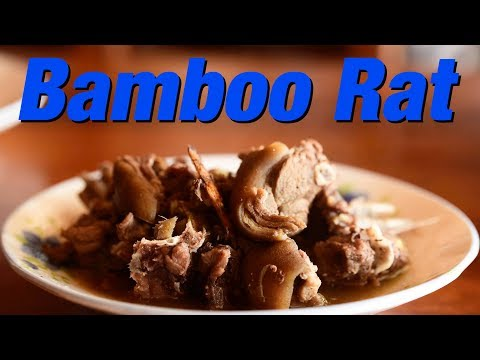 Eating Bamboo RAT, Wild Boar and Giant FROG - Laos Street Food