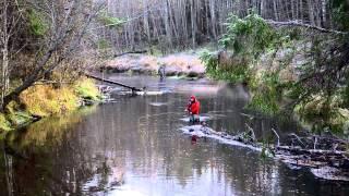 Ловля хариуса в тверской области на речке