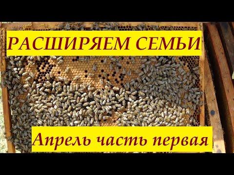 Метод Блинова работает, продолжаем расширение часть 1