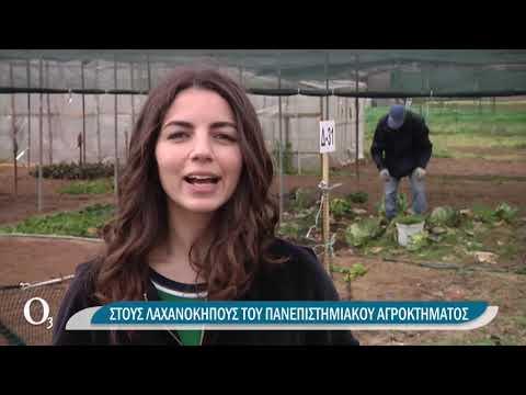 Λαχανόκηποι σε αυλές και μπαλκόνια | 30/03/2021 | ΕΡΤ