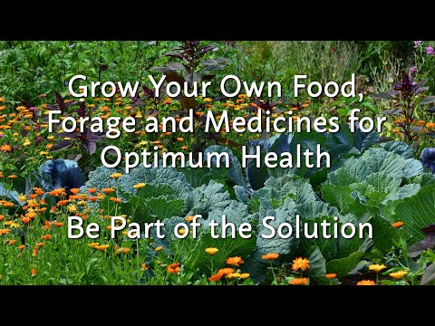Grow Your Own Food, Forage and Medicines for Optimum Health