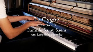camille saint saens carnival of the animals swan piano - TH-Clip
