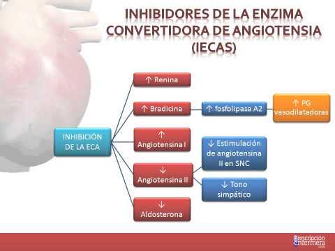 Preparaciones para la hipertensión durante el embarazo