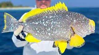 Хемингуэя про рыбалку на реке