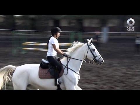 D Todo - Un deporte elegante: La equitación (30/11/2016)