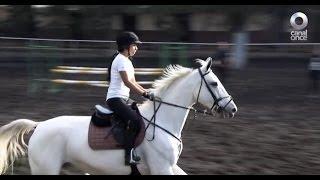 D Todo - Un deporte elegante: La equitación