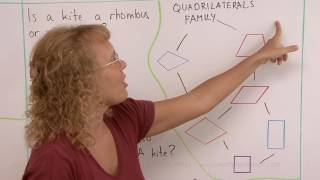 Classifying quadrilaterals - seven types of quadrilaterals and their family tree