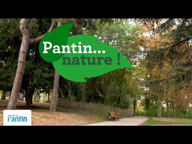 Pantin...nature ! Parc Henri Barbusse, 2020