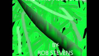 Rob Stevns – The Mind Abductors