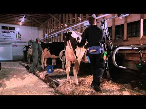 DEP | Production animale (Laitière)
