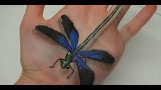 50 Dragonfly Tattoo Designs & Ideas