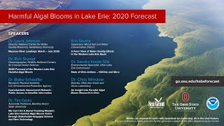 2020 Lake Erie Harmful Algal Blooms Forecast