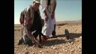 Les météorites: perles du désert