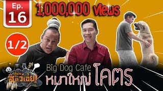 เพื่อนรักสัตว์เอ๊ย - คาเฟ่หมาใหญ่ใจดี [ BigDogCafe ] l EP.16