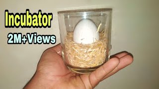 How To Make Egg incubator at Home without temperature controler || Egg Hatching Result 2020