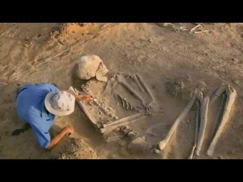 Ученые из Германии исследуют скелеты великанов из Эквадора