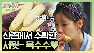 3 Meals A Day Mountain Village EP7