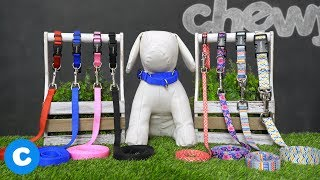 Frisco Dog Leashes And Collars   Chewy