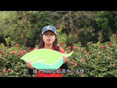 嘉義林管處植樹護樹影片