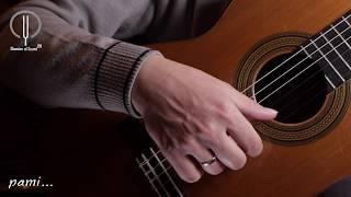 Техника игры на классической гитаре. Тремоло. Дмитрий Нилов.