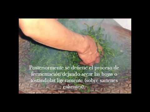 Arreglar la celulitis y los tirantes en los pies