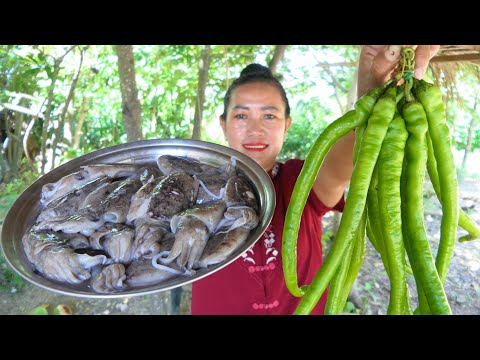 Tasty Squid Stir Fry Chili Green – Squid Cooking Recipe – Simple Life Cooking