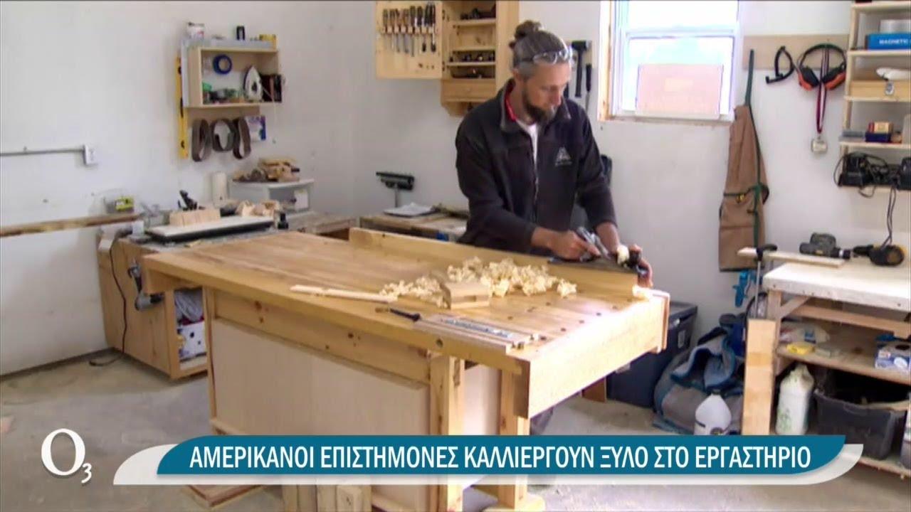 Το πολύτιμο ξύλο και οι εναλλακτικοί τρόποι δημιουργίας του | 23/03/2021 | ΕΡΤ