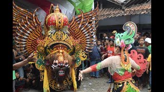 Barong Besar Syarif Kembang Wongso Kenongo Banyuwangi Aliyan,Goyangan Fans Kuda Lumping