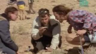 Paleoworld - African Graveyard 1 - Hunting Dinosaurs