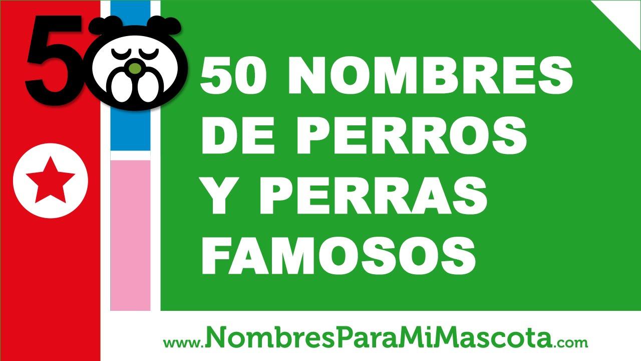 50 nombres de perros y perras famosos - los mejores nombres de perros - www.nombresparamimascota.com