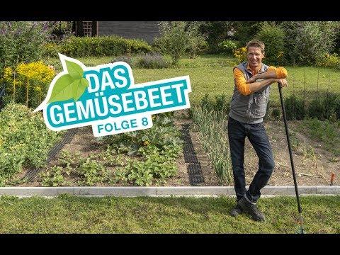 Das Gemüsebeet: Planung, Bewässerung, Düngung  - Tipps und Tricks für eine gute Ernte