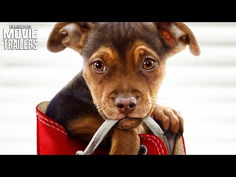 A DOG'S WAY HOME Trailer NEW (2019) - Ashley Judd Family Adventure Movie
