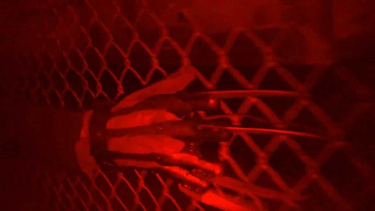 Freddy's Night